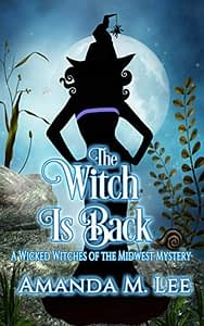 The Witch is Back book cover